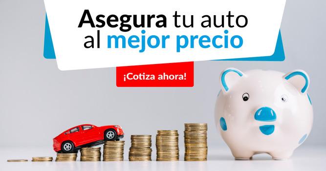 seguro para carros